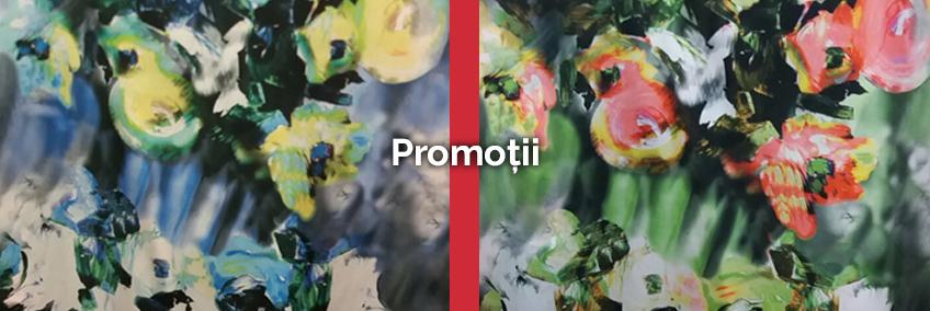 101-promo